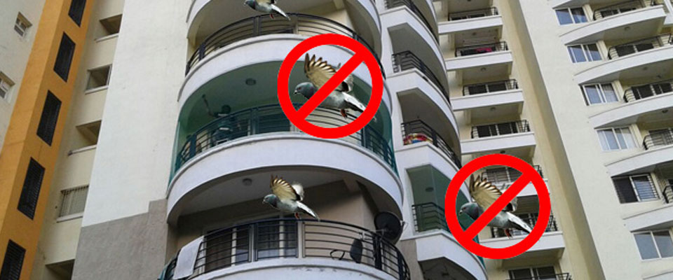 Anti Bird Netting Services in Mumbai